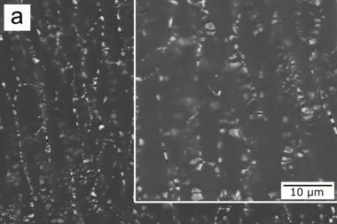 Микроструктура холоднокатанной полосы из экспериментального сплава.